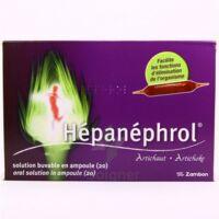 HEPANEPHROL, solution buvable en ampoule à Mérignac