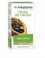 Arkogélules Cacao Gélules Fl/45 à Mérignac