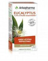 Arkogélules Eucalyptus Gélules Fl/45 à Mérignac