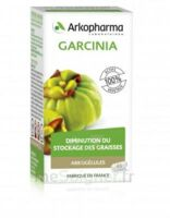 Arkogélules Garcinia Gélules Fl/45 à Mérignac