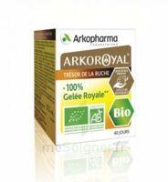 Arkoroyal 100% Gelée royale bio Gelée Pot/40g à Mérignac