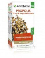 Arkogélules Propolis Bio Gélules Fl/45 à Mérignac