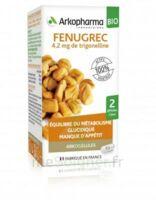 Arkogélules Fenugrec Bio Gélules Fl/40 à Mérignac