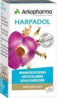 ARKOGELULES HARPAGOPHYTON Gélules Fl/150 à Mérignac
