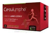 Santé Verte Circulymphe Triple Actions B/60 à Mérignac