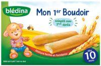 Bledina Mon 1er boudoir (6x4 biscuits) à Mérignac