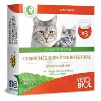 vetobiol vermifuge comprimés chatons/chats à Mérignac