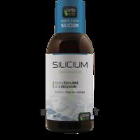 Santé Verte Silicium Solution buvable Fl/500ml à Mérignac