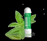 PURESSENTIEL RESPIRATOIRE Inhalation nasal 19 huiles essentielles à Mérignac