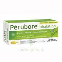 PERUBORE Caps inhalation par vapeur inhalation Plq/15 à Mérignac