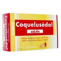 COQUELUSEDAL ADULTES, suppositoire à Mérignac
