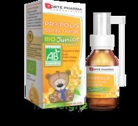 Forte Pharma Propolis bio Spray junior 15ml à Mérignac