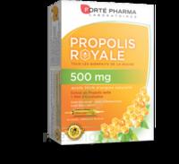 Forte Pharma Propolis 500 Solution buvable 20 Ampoules/10ml à Mérignac