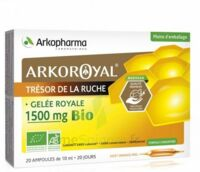 Arkoroyal Gelée royale bio 1500 mg Solution buvable 20 Ampoules/10ml à Mérignac