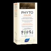 Phytocolor Kit Coloration Permanente 6.3 Blond Foncé Doré à Mérignac