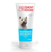 Clément Thékan Shampooing Poils Blancs T/200ml à Mérignac