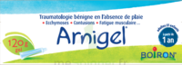 Boiron Arnigel Gel T/120g à Mérignac
