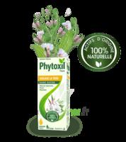 Phytoxil Toux Sans Sucre Sirop Adulte Enfant +2 Ans Fl/120ml à Mérignac
