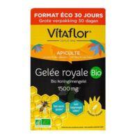 Vitaflor Bio Gelée Royale 1500mg Solution Buvable 30 Ampoules/15ml à Mérignac