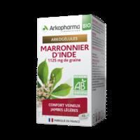 Arkogélules Marronnier D'inde Bio Gélules Fl/45 à Mérignac