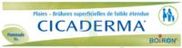 Boiron Cicaderma Pommade à Mérignac