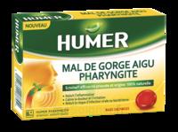 Humer Pharyngite Past Mal De Gorge Baies Sauvages à Mérignac