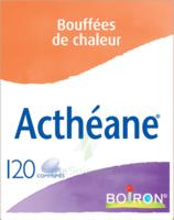 Boiron Acthéane Comprimés B/120 à Mérignac